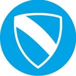 Wolsey Shield.jpg